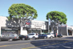 Rite Aid trees to come down, WSA has plan