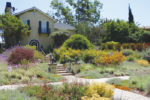 Landscape designers weave  together a variety of elements