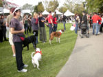 Best Friends' 'Strut your Mutt' for homeless pets in Pan Pacific Park