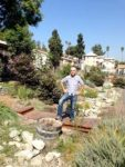Drought tolerant idea: waterless dry stream bed