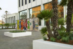 Drought tolerant landscaping installed at 5900 Wilshire building