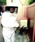 Residents abuzz with news of urban bee legalization in L.A.