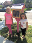 The Little Free Library that thought it could… and did